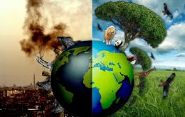 Hạch toán thuế bao vệ môi trường