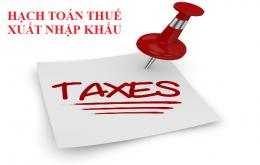 Hạch toán thuế xuất nhập khẩu