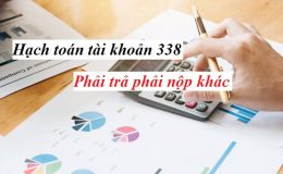 Cách hạch toàn tài khoản 338 phải trả phải nộp khác