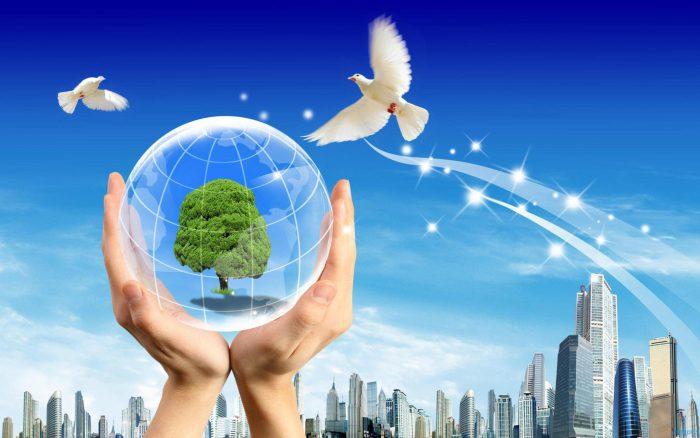 Thuế bảo vệ môi trường