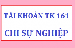 tài khoản 161